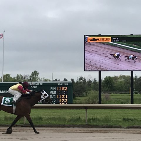 video display showing a jockey on a horse in a race